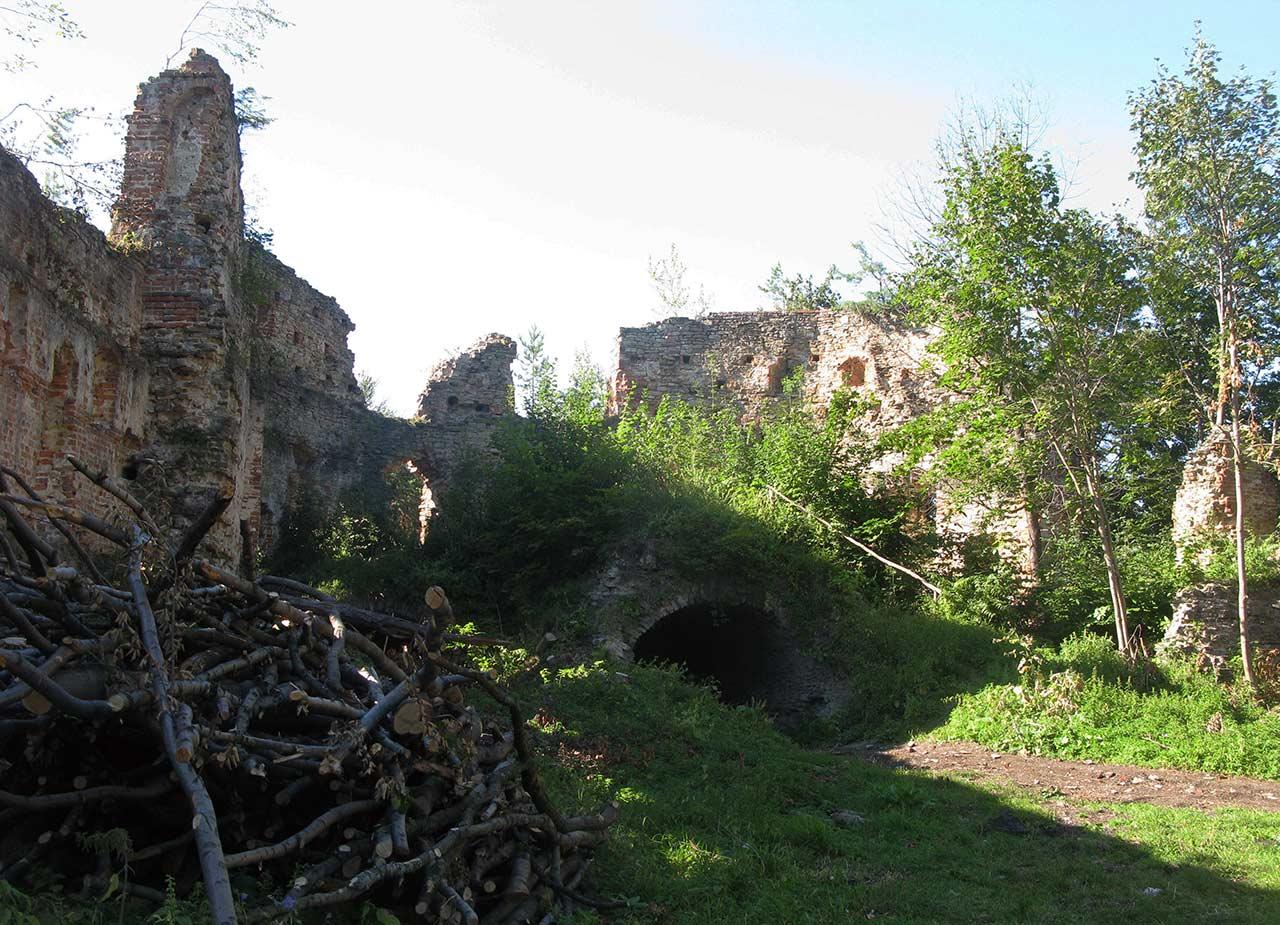 Pozostałości zamku Herburtów pod Dobromilem. Źródło: http://www.forum.gorgany.com