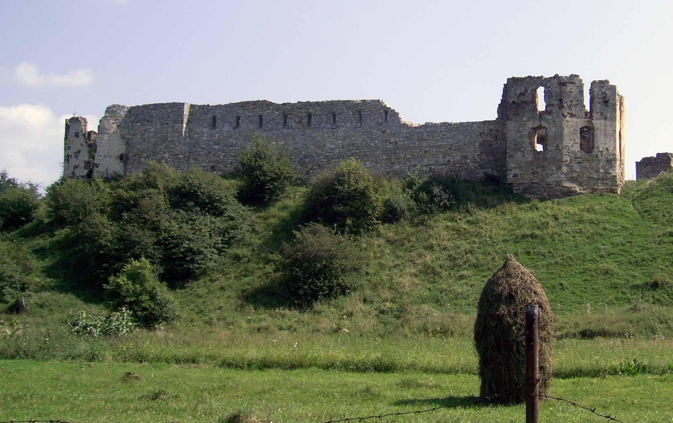 Pniewski zamek niedaleko Nadwornej. Źródło: tour-collection.com.ua