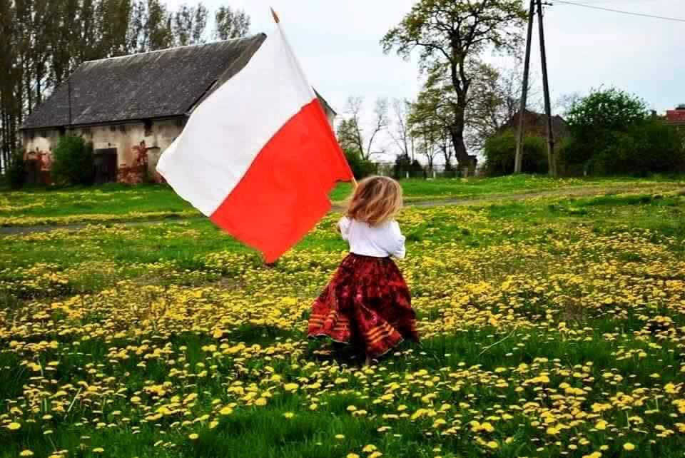 Źródło: www.suchomlynow.pl