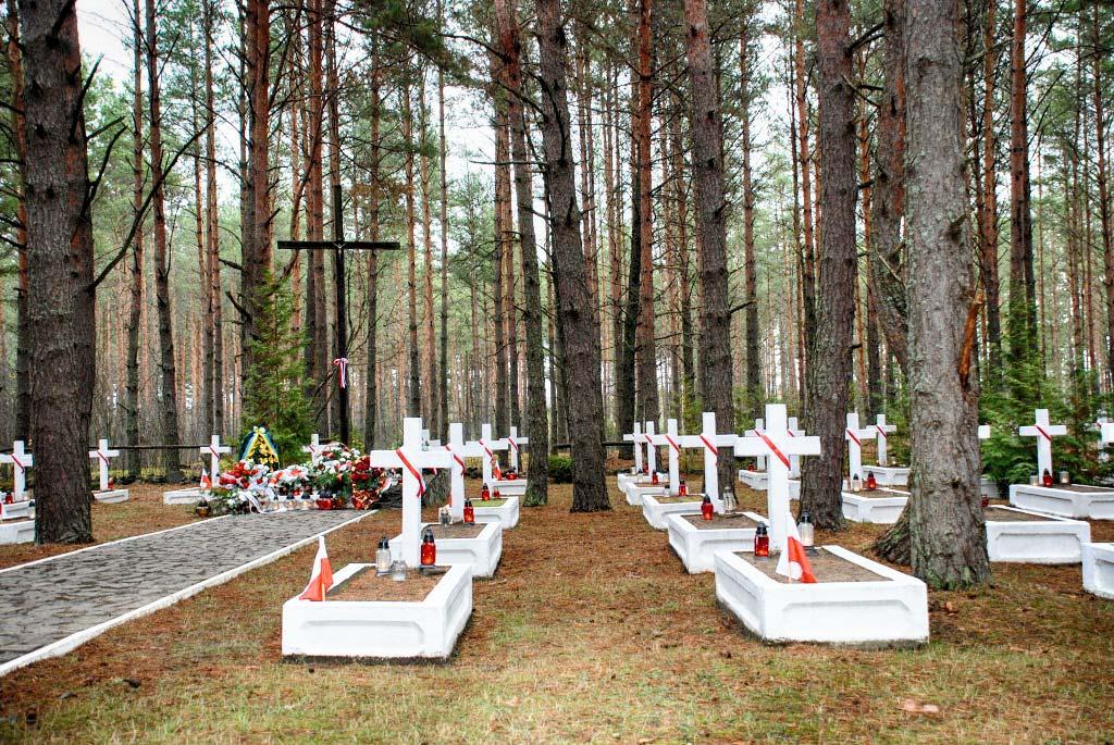 Źródło: www.lasy.gov.pl