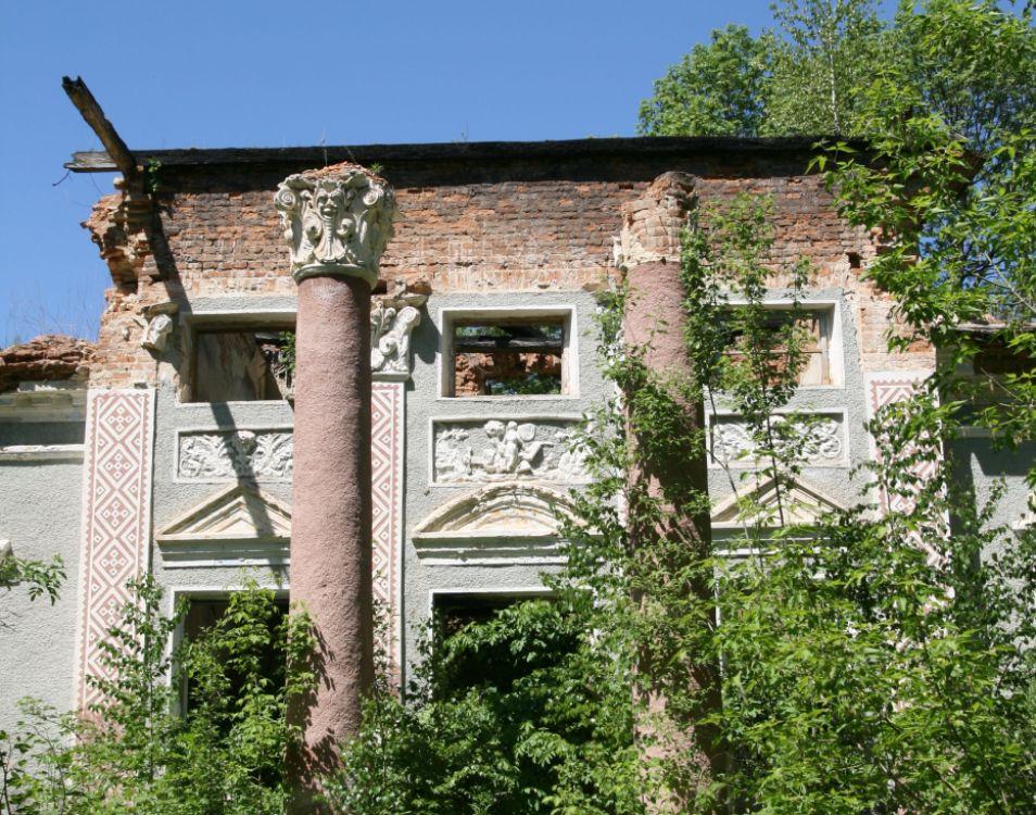 Zniszczony pałac Krasowskich w Biłyczynie. Źródło - mediabar.lab-design-sites.com