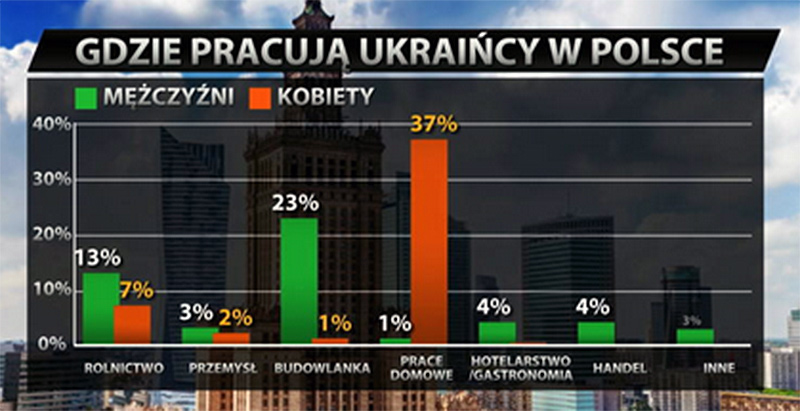 Źródło: tvn24bis.pl