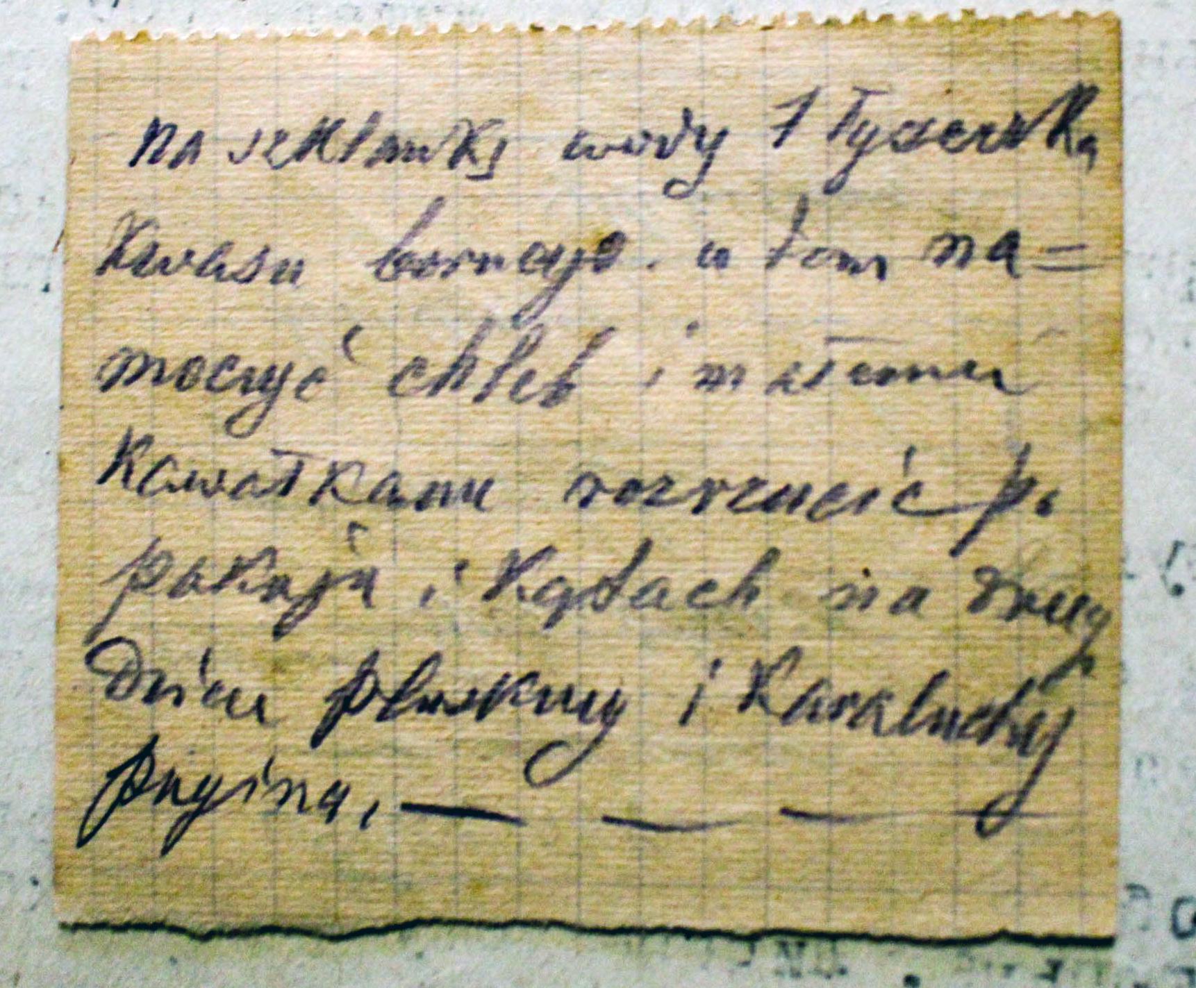 Instrukcja w języku polskim o pozbyciu się karaluchów w domu, którą bolszewicy uznali za dowód w sprawie Prolińskiego