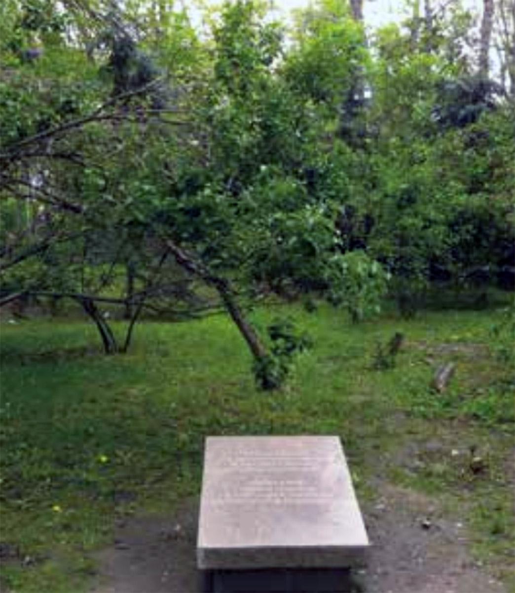 Tablica, upamiętniająca Drzewickich w ałma-atyńskim parku