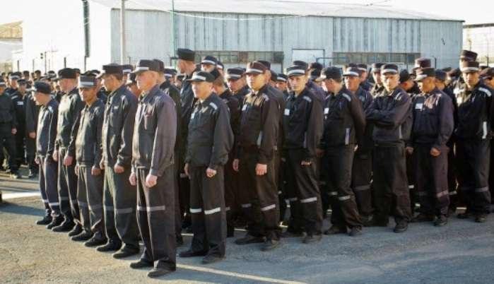Więźniowie Donieckiego Zakładu Karnego. Źródło - http://uapress.info