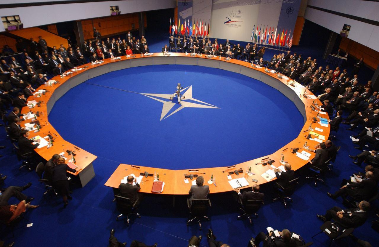 zdjęcie pobrano z http://www.i-g-t.org/