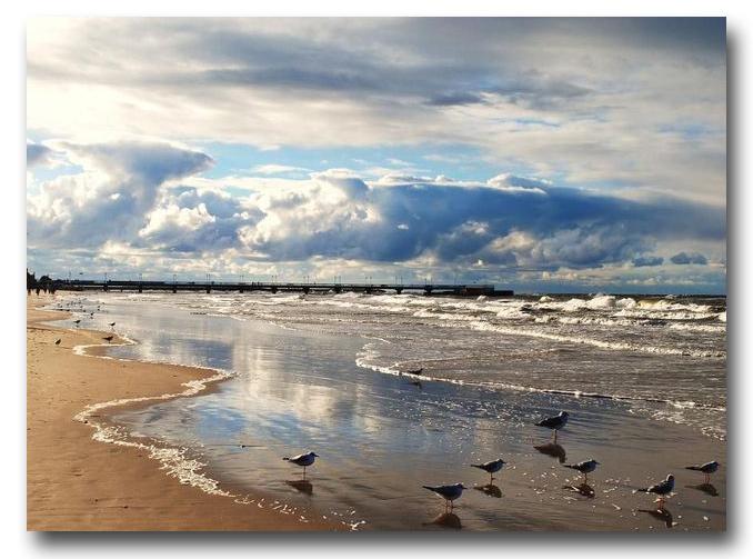 Zdjęcie pobrano z www.wiadomosci24.pl