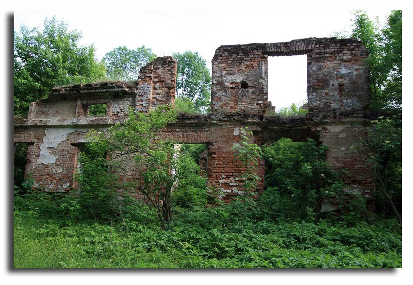 Zniszczona pałac w Wyszczekusach